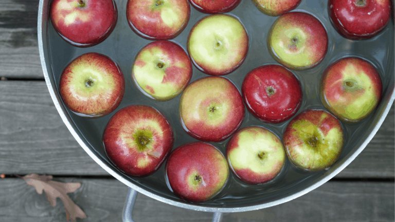 Apple bobbing: a bucket of water containing some green and red apples
