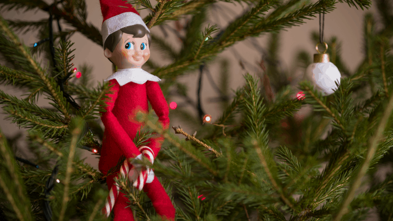 An elf on the shelf sitting in a Christmas tree holding a candy cane.