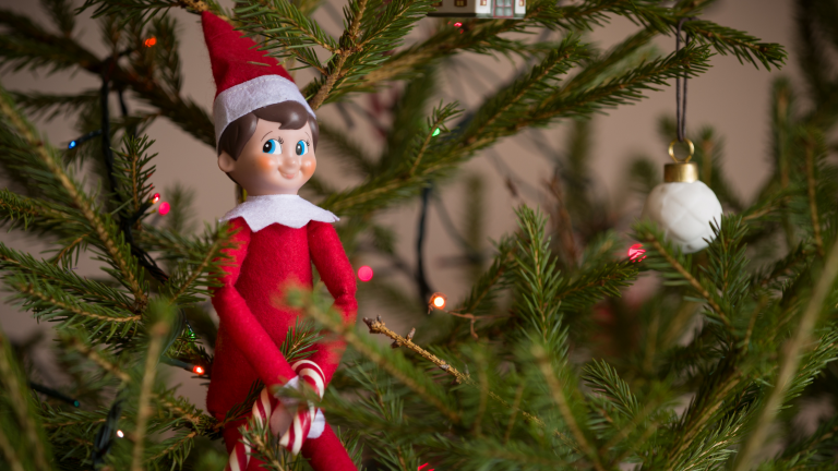 Family Christmas traditions: an elf on the shelf sits in a Christmas tree with a candy cane waiting to join the family this Christmas.
